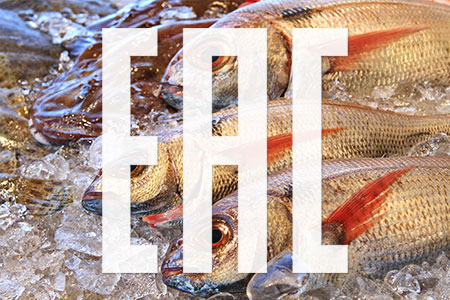 TR EAEU 040/2016 On safety of fish products
