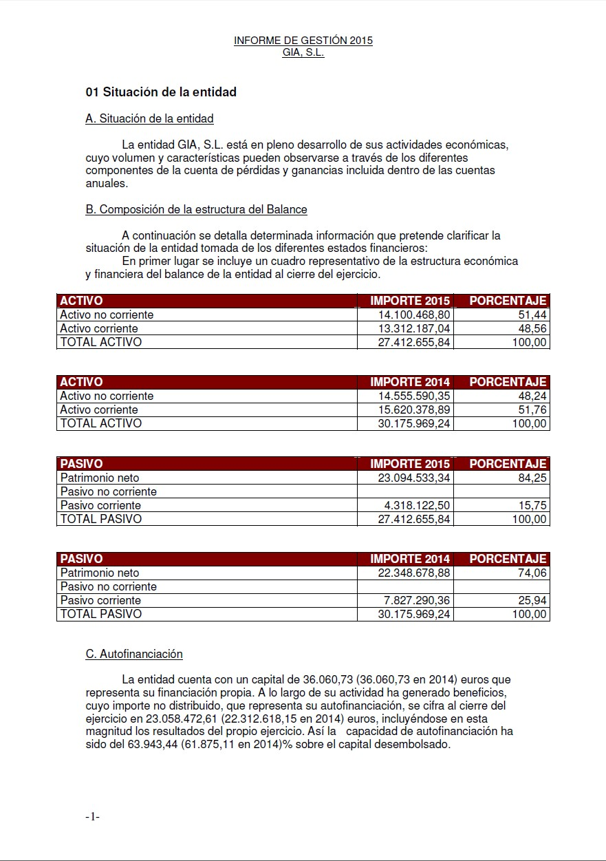 Annual financial statements from commercial register of Spain